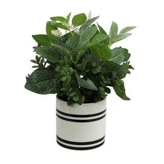 Artificial Mixed Garden Foliage Plant With Striped Ceramic Pot - Green