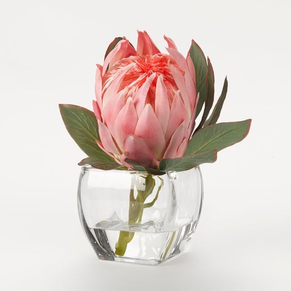 D&W Silks Pink Queen Protea in Glass Cube