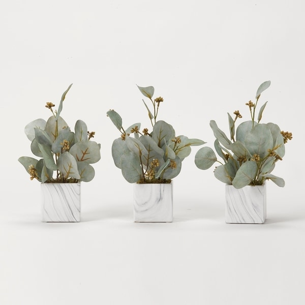 D&W Silks Seeded Eucalyptus Branches in Marbled Ceramic Cube (Set of 3)