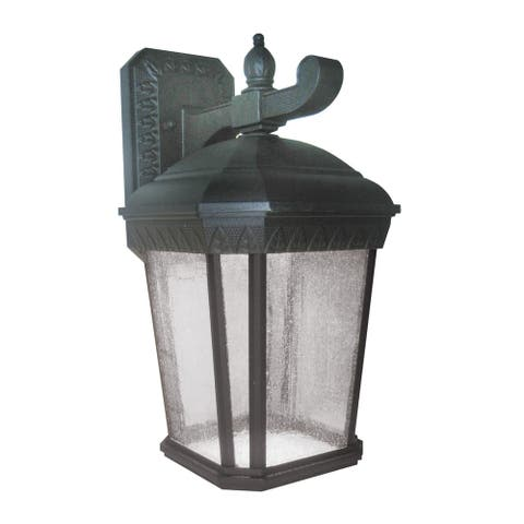 Bronson 1-light Black LED Outdoor Wall Sconce, Clear Seeded Glass Diffuser