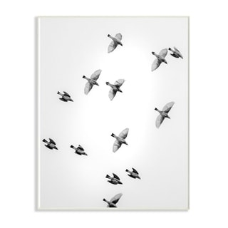 The Stupell Home Decor Collection Birds in Flight Black and White Photography, 10 x 15, Proudly Made in USA - Multi-Color