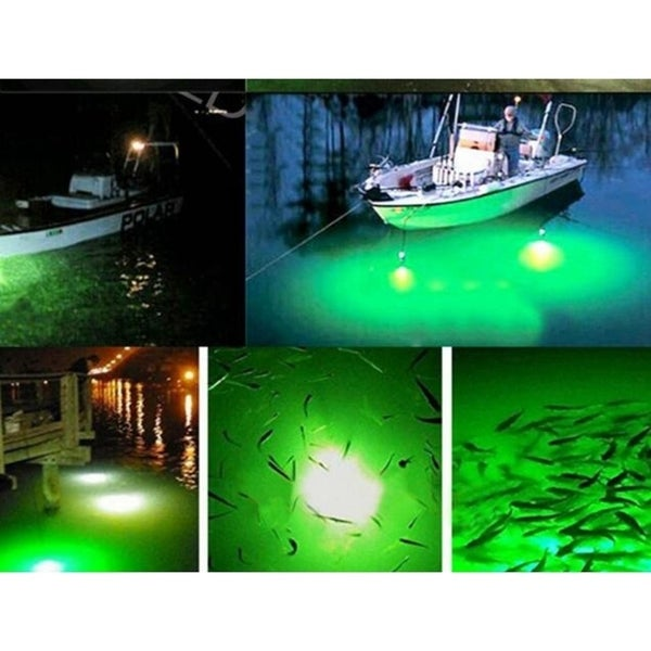 LED Green Underwater Submersible Night Fishing Light Crappie Shad Squid 12V
