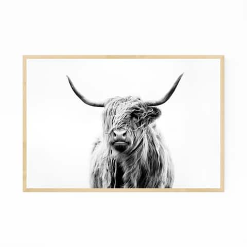 Noir Gallery Highland Cow Scotland Photo Framed Art Print