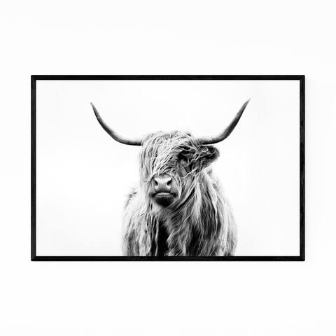 Noir Gallery Highland Cow Scotland Photo Framed Art Print