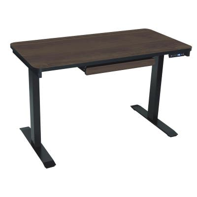 Motionwise SDG48A Electric Standing Desk, 24x48 inch Home Office Series, Walnut