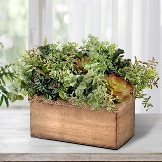 "Plastic Mix Succulent In Rectangle Wood Box 12""L"""