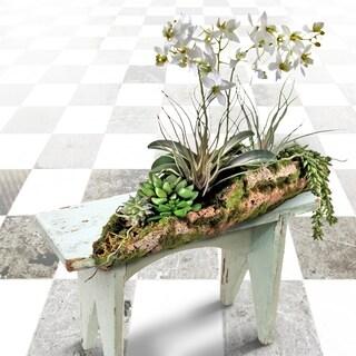 """Min Orchid & Succulent In Faux Log 19""""L"""""""