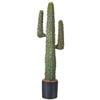 Plastic Potted Mexican Cactus 38""