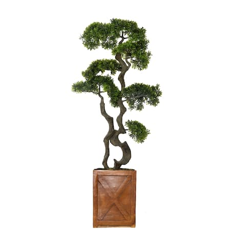 "Laura Ashley 54"" bonsai tree in Fiberstone Planter"