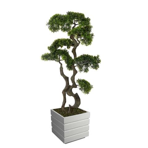 """51"""" bonsai tree in Fiberstone Planter"""