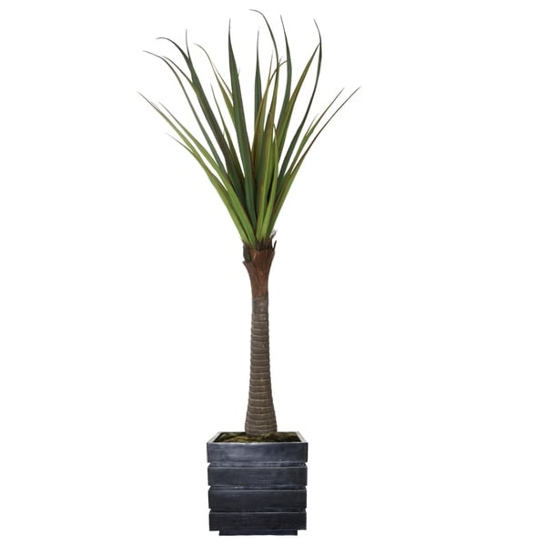 """Laura Ashley 78"""" Real touch agave in Fiberstone Planter"""