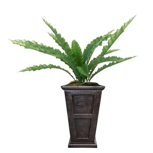 """Laura Ashley 51"""" Real Touch Agave in Fiberstone Planter"""