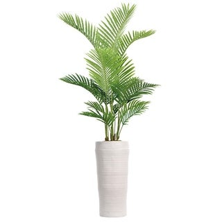 """77"""" Real Touch Palm Tree in Fiberstone Planter"""