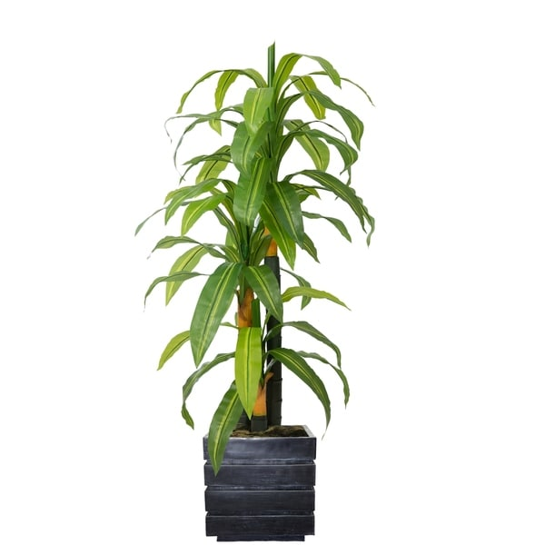 "58"" Real touch corn plant in Fiberstone Planter"