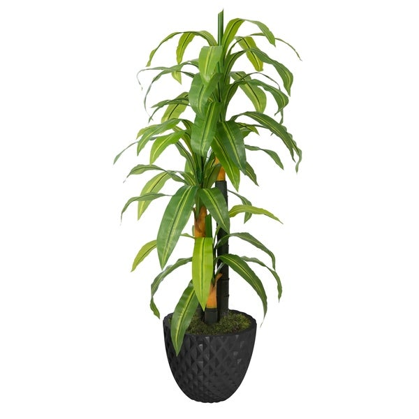 "57.6"" Real touch corn plant in Fiberstone Planter"