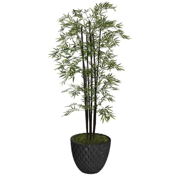 """77.6"""" Tall Bamboo Tree with Decorative Black Poles and Fiberstone Planter"""