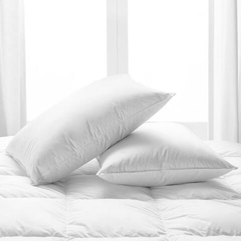 Copper Grove Attendorn Down Pillows (Set of 2)