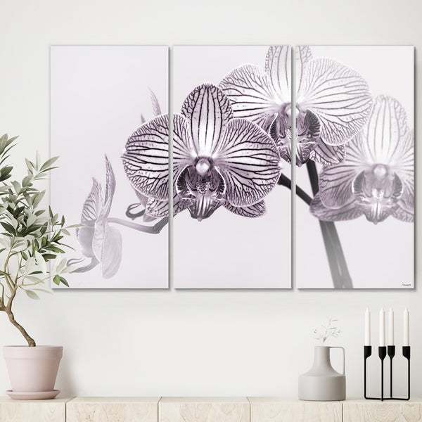 Designart 'Orchid-2017-33bw' Cottage Canvas Art Print - 36x28 - 3 Panels