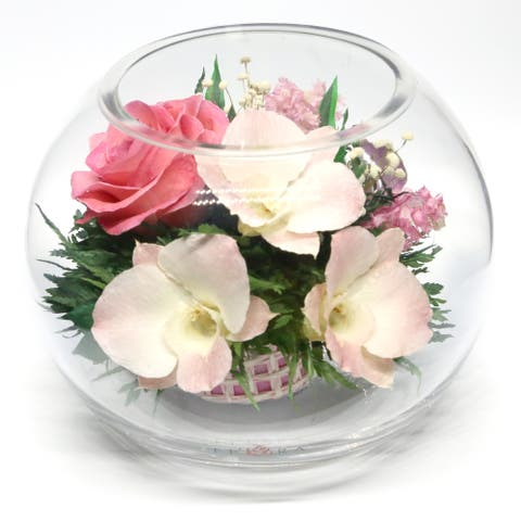 Natural Long Lasting Flowers in a Sealed Round Glass Vase