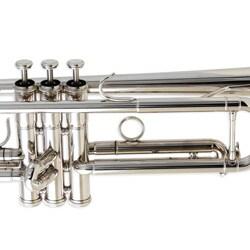 Elegant Silver Trumpet - Thumbnail 2