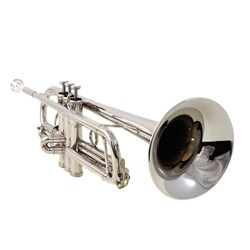 Elegant Silver Trumpet