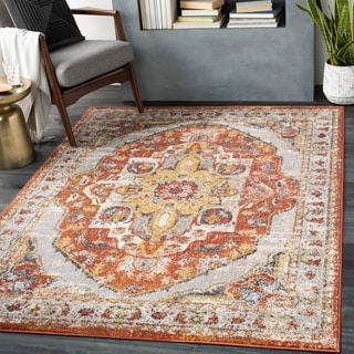 Ira Traditional Medallion Area Rug