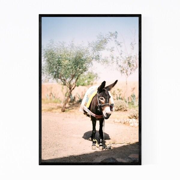 Noir Gallery Donkey Desert Animal Morocco Framed Art Print