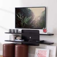 Shop Penny Modern Wall-Mount Media Shelf - Free Shipping Today