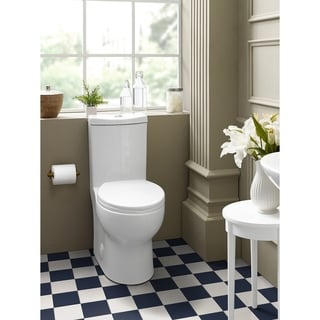 Plaisir One Piece Elongated Toilet Dual Flush 0.8/1.28 GPF