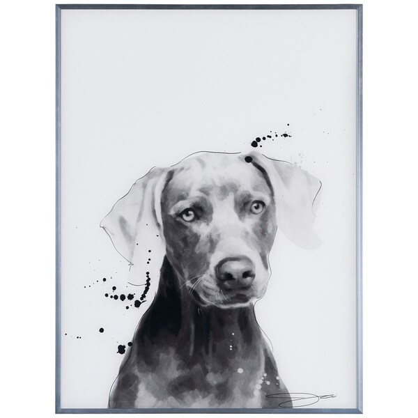 """Weimaraner"" Black and White Pet Dog Wall Art Reverse Printed Glass Encased with a Gunmetal Anodized Frame"