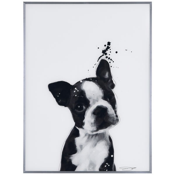 """""""Boston Terrier"""" Black and White Pet Dog Wall Art Reverse Printed Glass Encased with a Gunmetal Anodized Frame"""