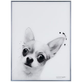 """""""Chihuahua"""" Black and White Pet Dog Wall Art Reverse Printed Glass Encased with a Gunmetal Anodized Frame"""