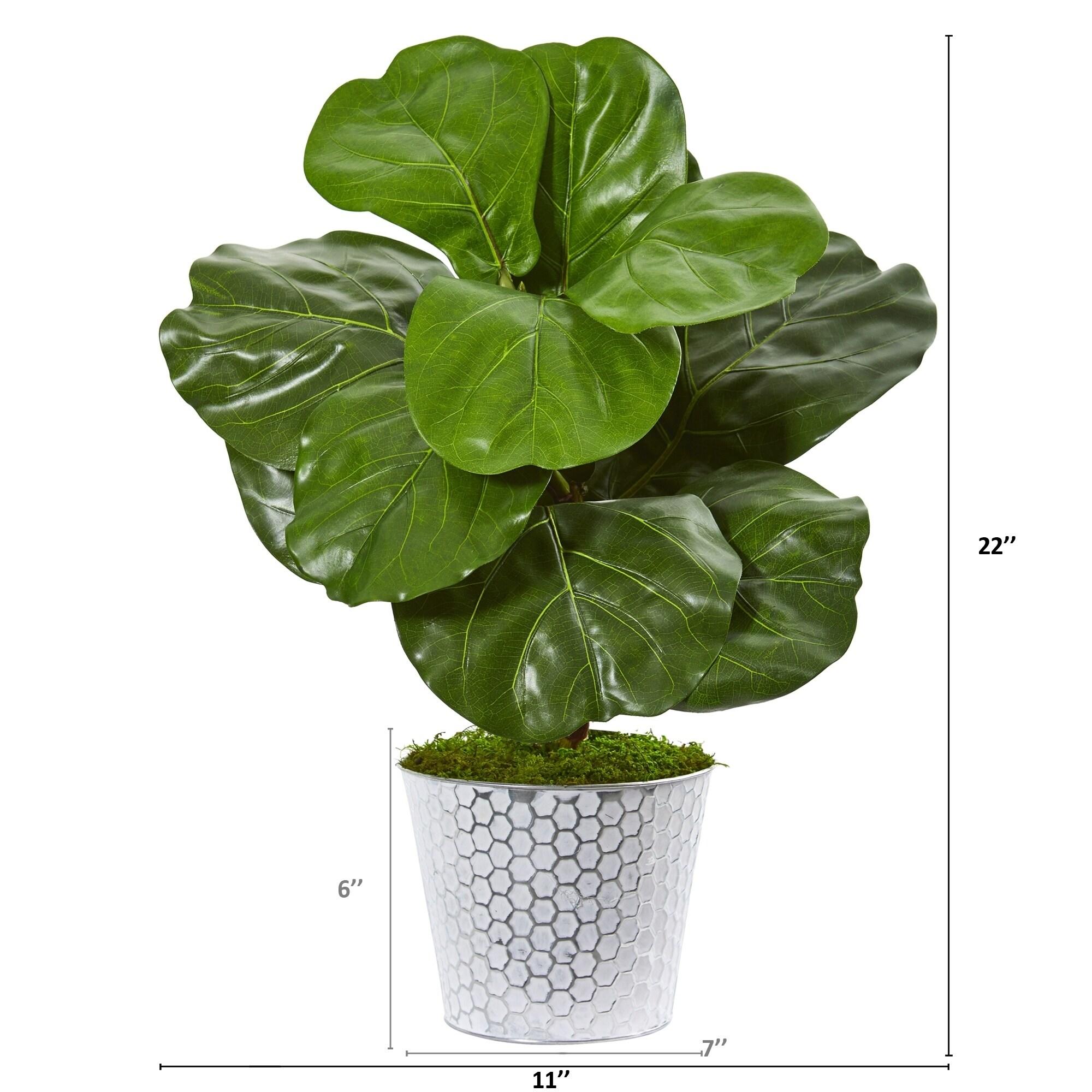 Velener 22 Artificial Fiddle Leaf Tree for Indoor Home D/écor