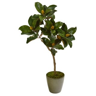 """Link to 41"""" Magnolia Leaf Artificial Tree in Olive Green Planter Similar Items in Decorative Accessories"""