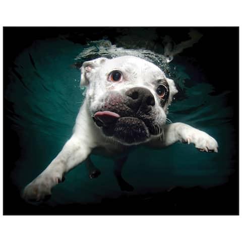 """""""Bulldog"""" Dog Wall Art on Frameless Free Floating Tempered Glass Panel - Blue/White"""