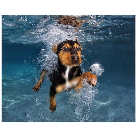 """Doberman Pincher"" Dog Wall Art on Frameless Free Floating Tempered Glass Panel - Blue/Brown"