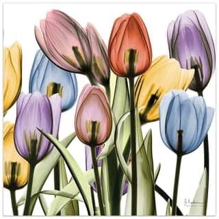 """Tulip Scape x-ray II"" Colorful Flower Wall Art on Frameless Free Floating Tempered Glass Panel - Multi-Color"