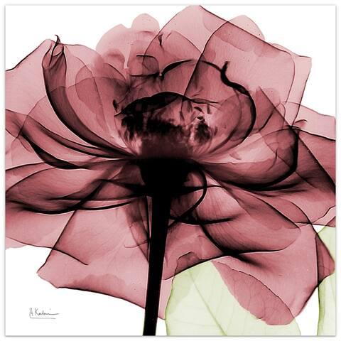 """Chianti Rose II"" Rose Flower Wall Art on Frameless Free Floating Tempered Glass Panel - Pink/White"