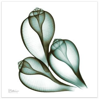 """Coastal Serenity II"" Abstract Flower Wall Art on Frameless Free Floating Tempered Glass Panel - Green/White"