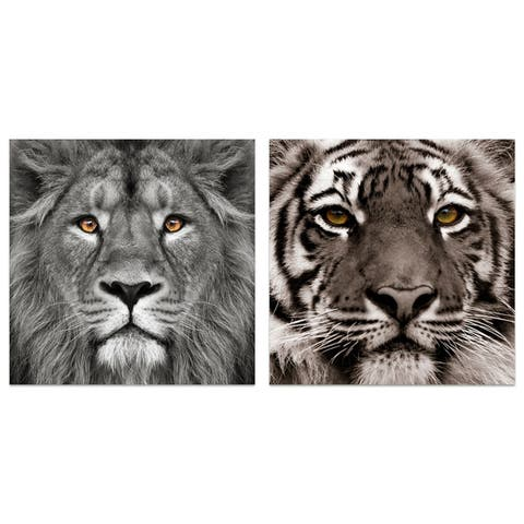 """""""Lion & Tiger"""" Glass Wall Art Printed on Frameless Free Floating Tempered Glass Panel - Grey"""