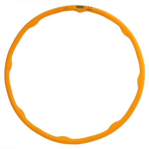 Digital Fitness Hoop