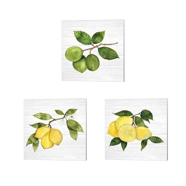 Kathleen Parr McKenna 'Citrus Garden Shiplap' Canvas Art (Set of 3)