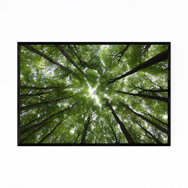 Noir Gallery Forest Woods Nature Landscape Framed Art Print