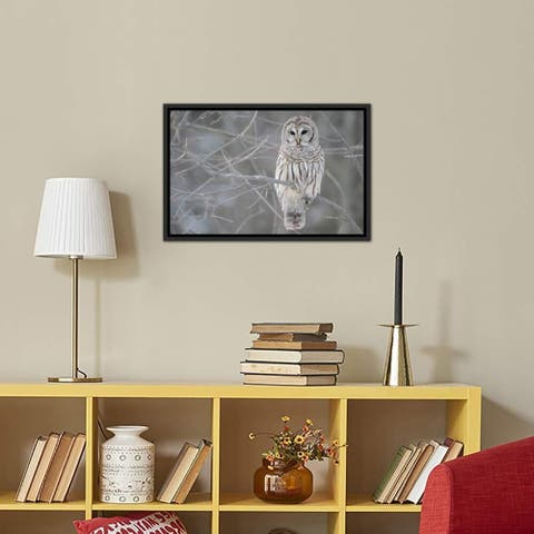 """iCanvas """"Barred Owl on Branches"""" Framed Canvas Print"""