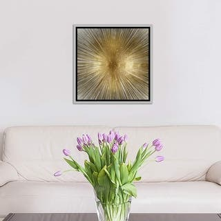 """iCanvas """"Radiant"""" by Abby Young Framed Canvas Print"""