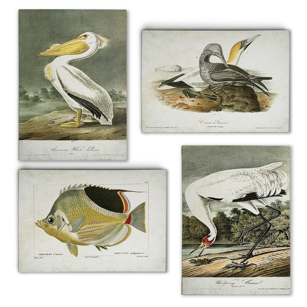 Vintage Costal Plates I -Gallery Wrapped Canvas Set