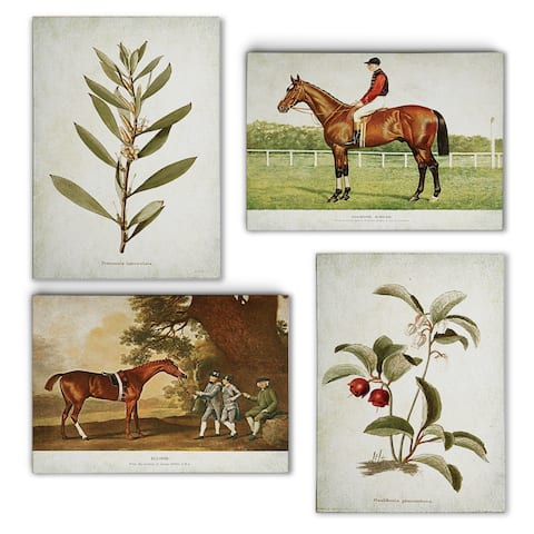 Vintage Equesitrian and Floral Mix -Gallery Wrapped Canvas Set
