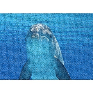 """dolphin 2 area rug - 5'0"""" by 7'0"""" - 5' x 8'/Surplus"""
