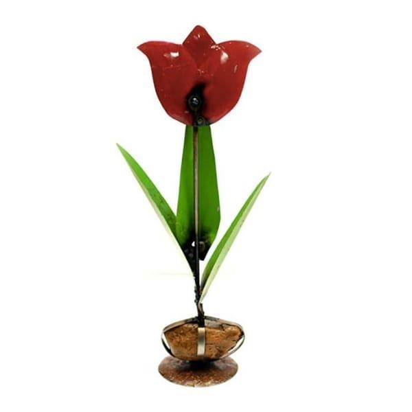 Tulip On Rock Base Gard - N/A