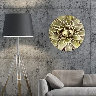 Oliver Gal 'Cactus Flower Round' Floral and Botanical Round Circle Acrylic Wall Art - Green, White
